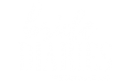 bride diaries logo